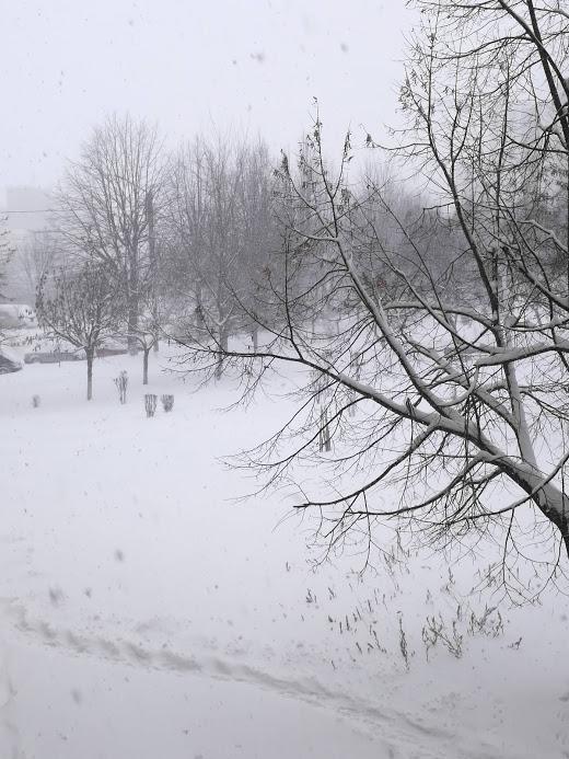 iarna vreme 2019